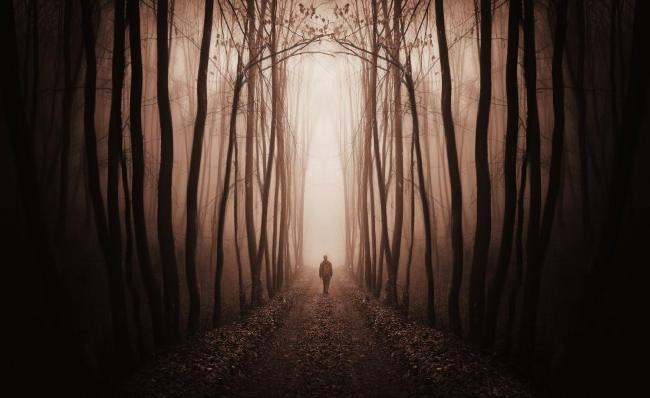 img_walk-path