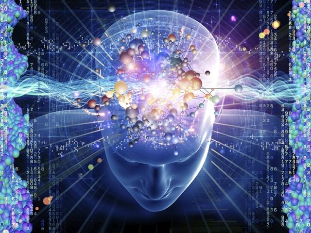 brain-evolution-orig