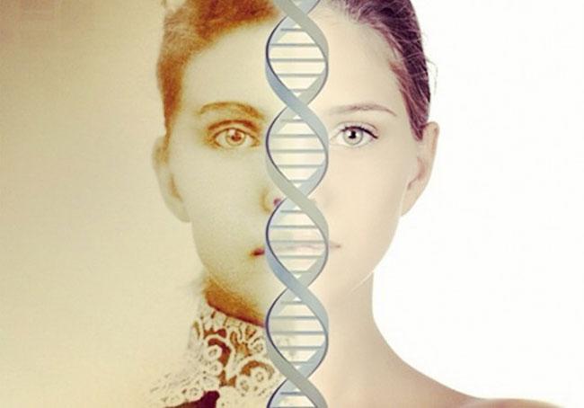 DNA Ancestor