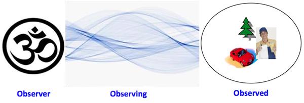 observer-observing-observed