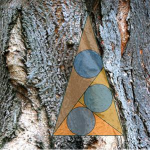 41-tree-geometry